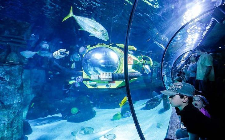 Атракцион Atlantis by SEA LIFE
