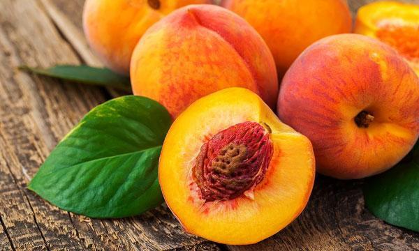 Персик из косточки посадка и уход