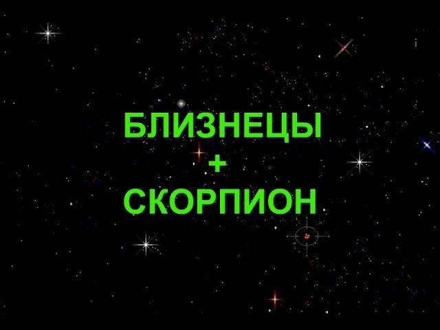 Совместимость знаков зодиака скорпион и близнецы