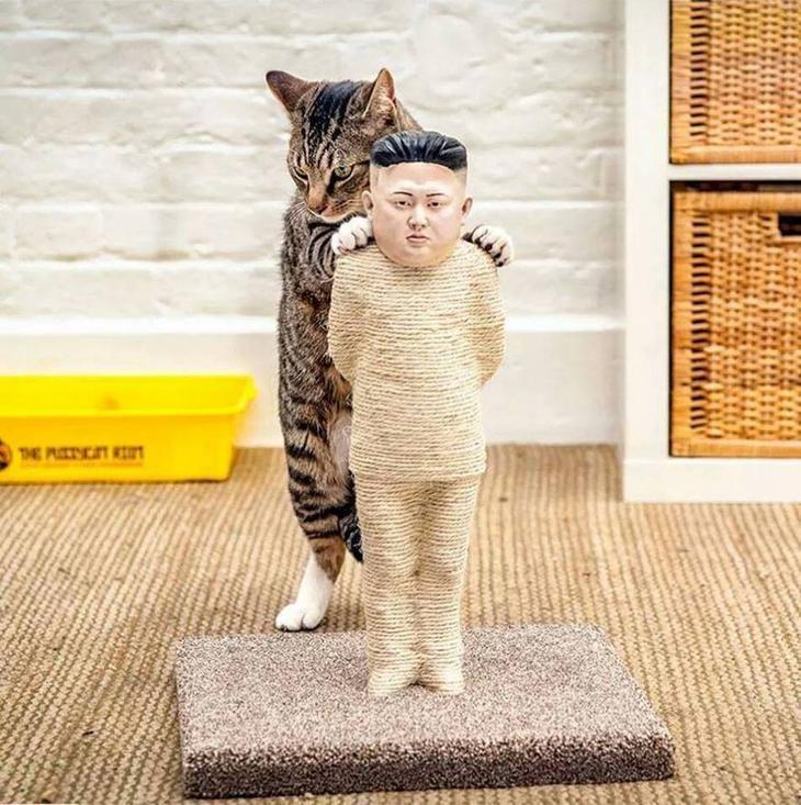 Крективная когтеточка для котов политически подкованных хозяев