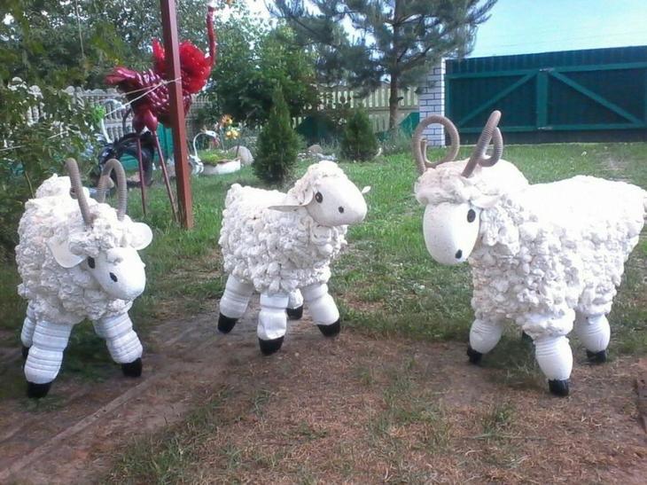 Кудрявые овечки