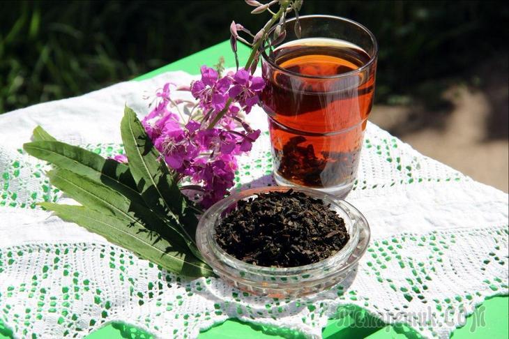 Как правильно заваривать иван чай в домашних условиях: лучшие рецепты заварки, настоек, лечебных отваров