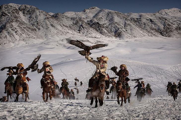luchshie foto zhivotnyh 1 8 yanvarya 9 Лучшие фотографии животных со всего мира за неделю