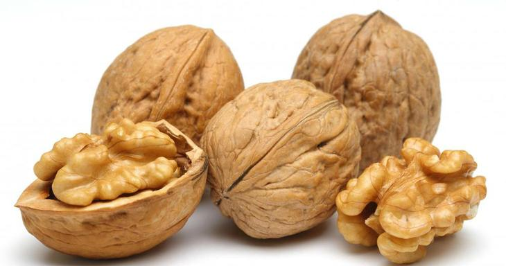 Перегородки грецких орехов. Применение