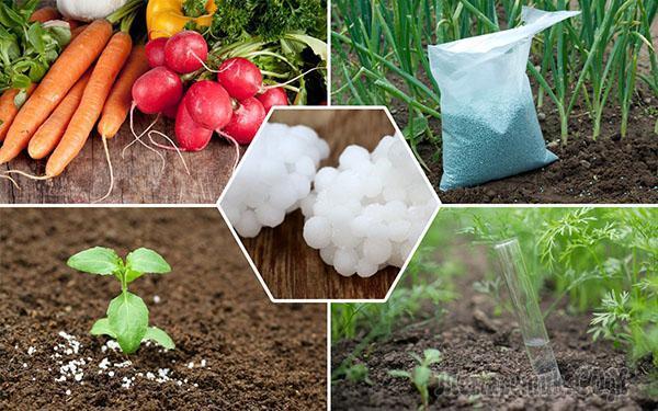 Аммиачная селитра как удобрение применение на огороде
