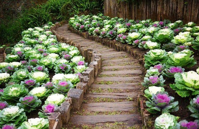 Примеры великолепного оформления садового участка своими руками