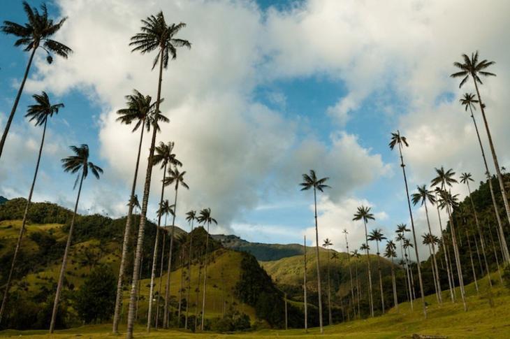 Главные туристические достопримечательности Колумбии