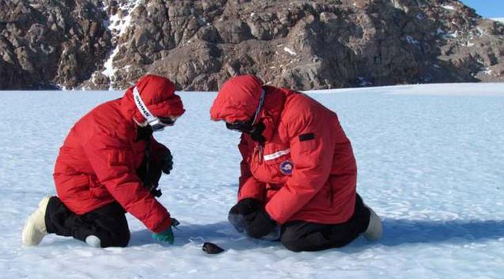 Шокирующие сокровища Антарктиды