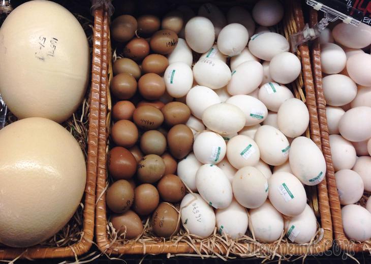 Сколько хранится вареное яйцо без холодильника и в холодильнике? Сколько можно хранить очищенные вареные яйца