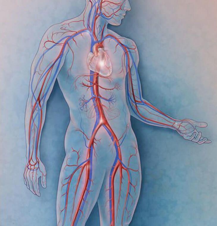 Точки, которые помогут избавиться от боли в области сердца