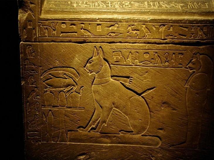 Культ кошки в Древнем Египте древний египет, кошки, мистика, тайны