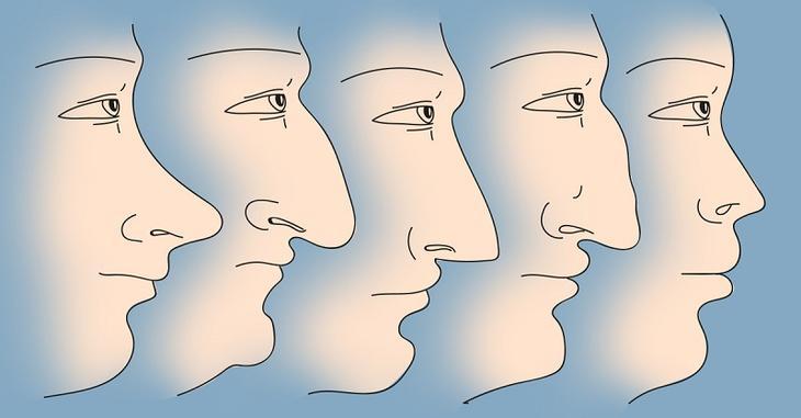 Вот что форма носа может поведать о твоем характере!