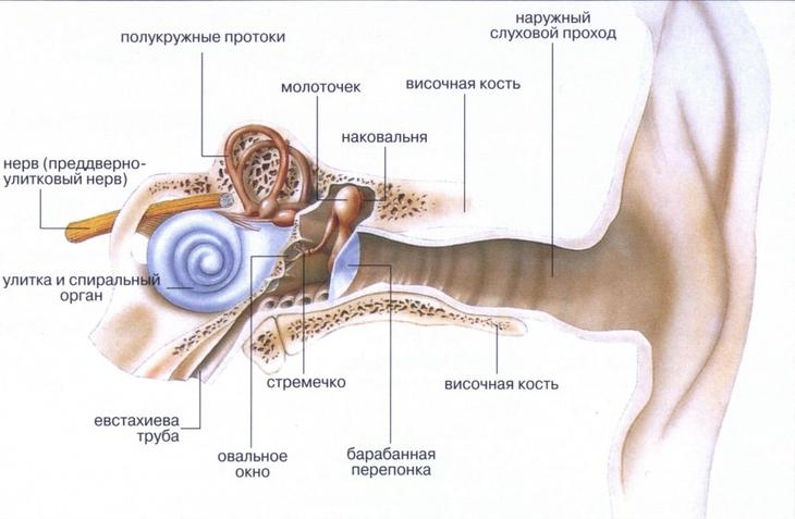 Головокружение при опухоли мозга