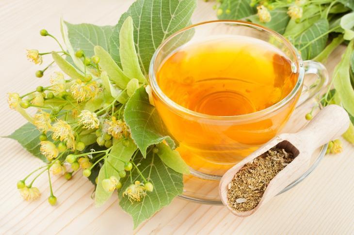 Узнайте чем полезен чай из липы и его целебные свойства