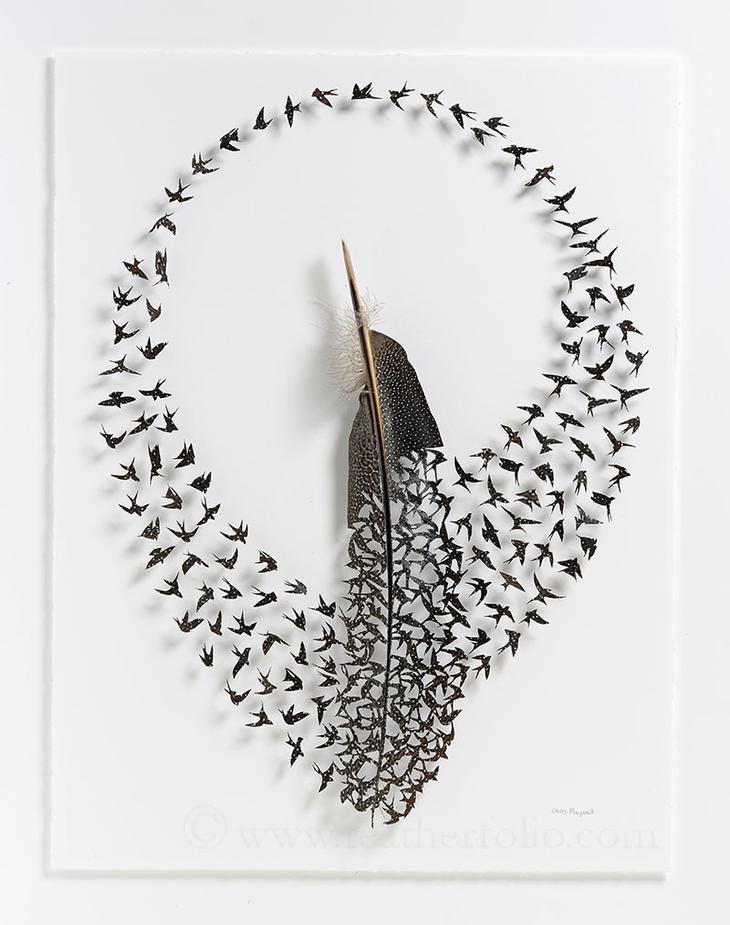 Новые работы из птичьих перьев от Chris Maynard (11 фото)
