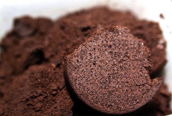 Удобрение из кофейного жмыха