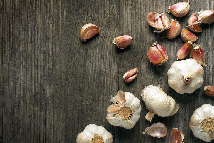 Чеснок посевной (Allium sativum)