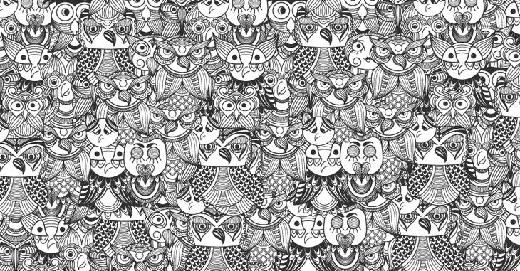 800-418_owls_body