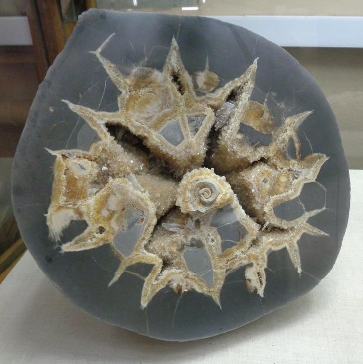 Сферические карбонатные конкреции — это удивительные объекты округлой формы, достигающие порой гигантских размеров (более двух метров в диаметре) бобовины, геология, земля, камни, конкреции, чудо