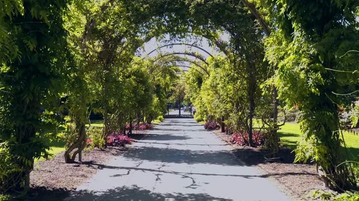 Природная достопримечательность Бремена - парк Рододендронов