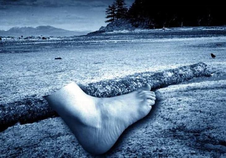 Берег отрубленных ног загадки, захватывающе, истории, тайны
