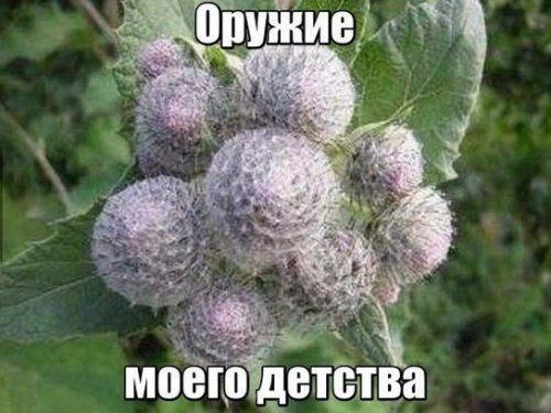 Улыбахи!:)