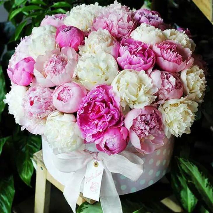 Коробка с пионами: белыми и розовыми