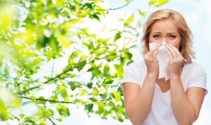 Не стоит забывать и о том, что растение является мощным аллергеном