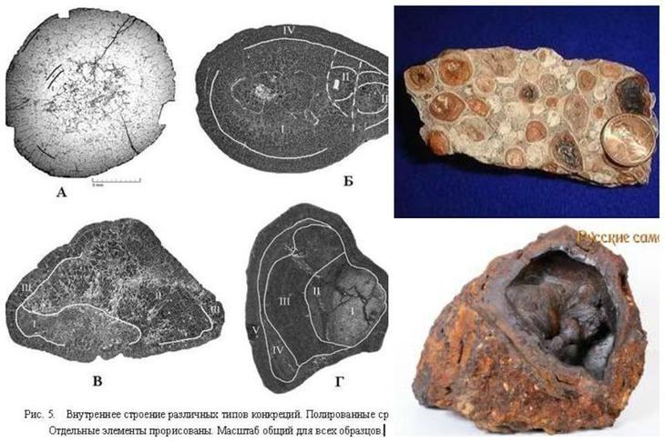 Бобовины — природные минеральные образования (конкреции) эллипсоидальной или сферической формы размером от 1 мм до 3 см бобовины, геология, земля, камни, конкреции, чудо