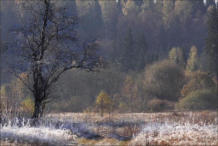 Пеший поход выходного дня:пл. Чеховская - Ябедино - Дергайково   11 октября 2009 г.