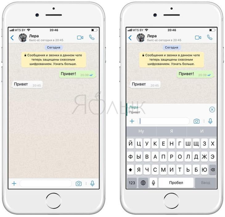 10 полезных опций WhatsApp, которые следует знать каждому