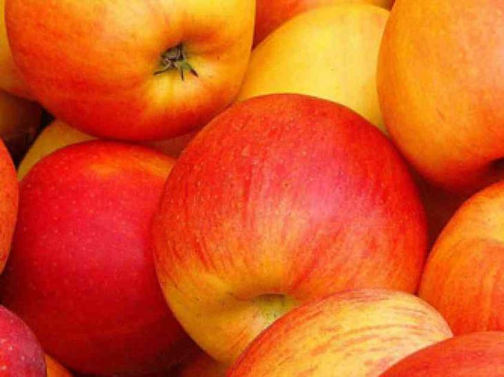 Собирать яблоки во сне: что значит волшебное сновидение?