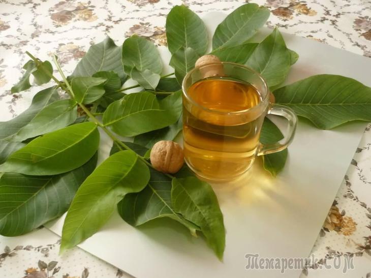 Грецкий орех польза вред калорийность лечебные свойства