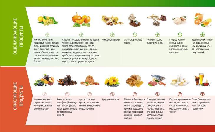 Ощелачивающие организма продукты