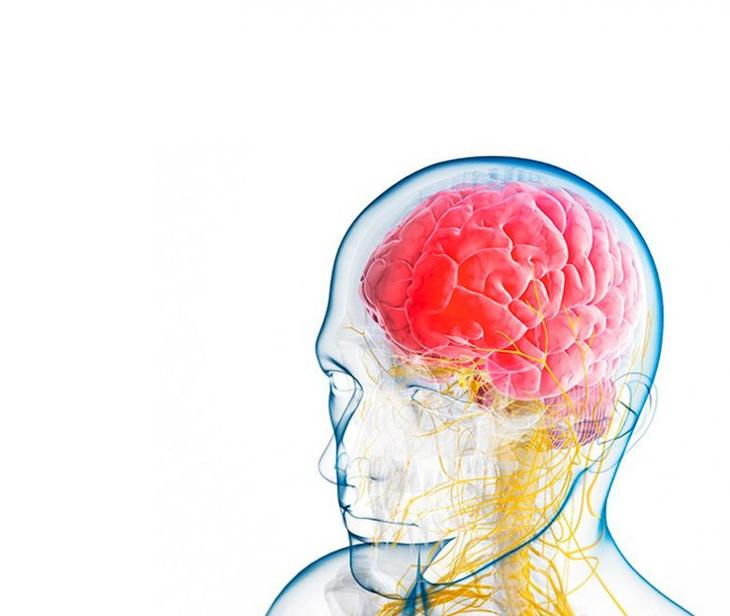 Продукты для здоровья мозга