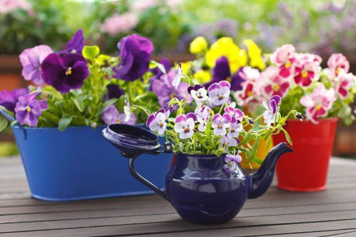 Невероятные идеи, как устроить сад прямо у себя на балконе