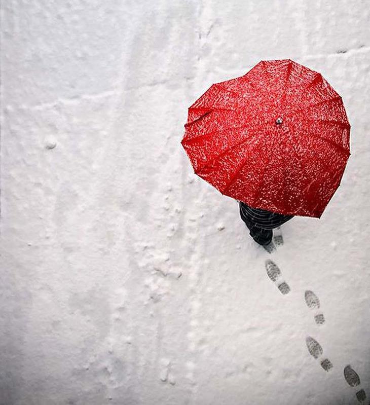 Umbrellas29 19 удивительных зонтов для осени