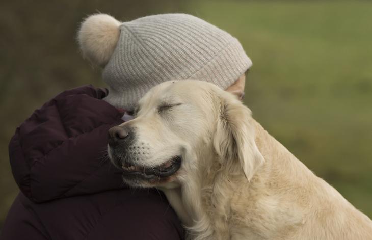 Победители фотоконкурса Dog Photographer of the Year 2018 15
