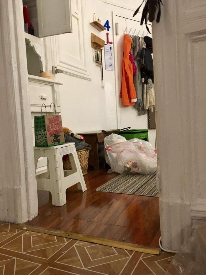 На каждом из этих снимков спряталась кошка-ниндзя