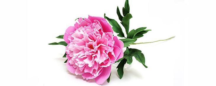 fullsize Мастер класс цветы из фоамирана