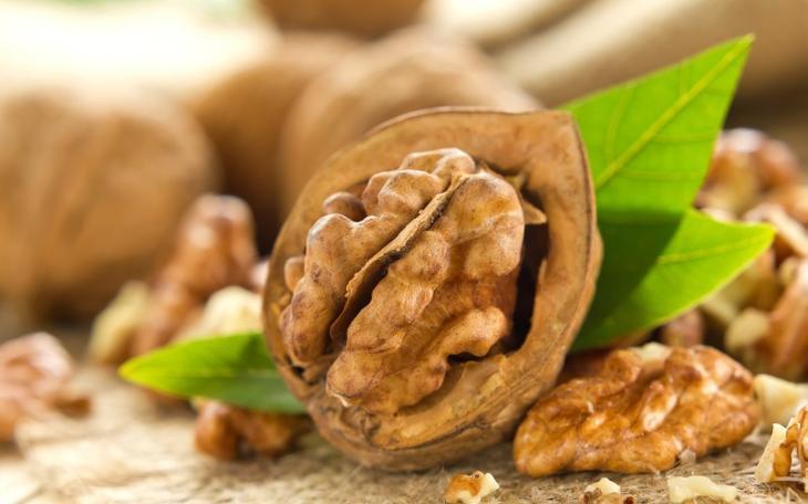 Какие орехи полезны? Грецкие и другие виды