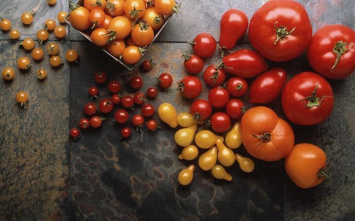1380318797-pomidori--16