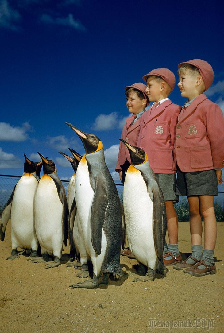 27 неопубликованных фотографий из архивов National Geographic