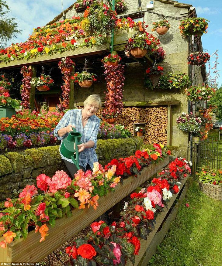 1161 Цветочный дом