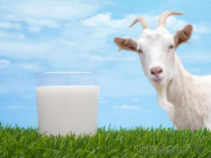 козье молоко при гастрите с повышенной кислотностью