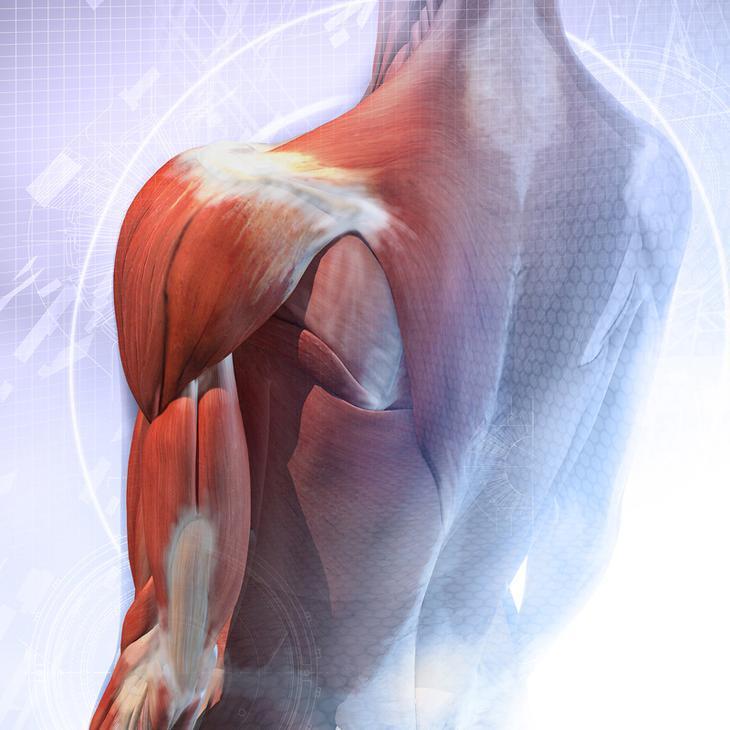 4 упражнения для омоложения организма