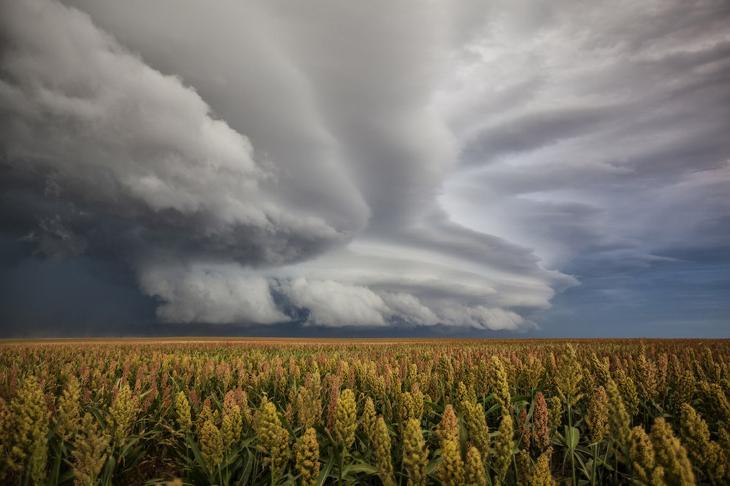 Фактурные облака в штате Колорадо