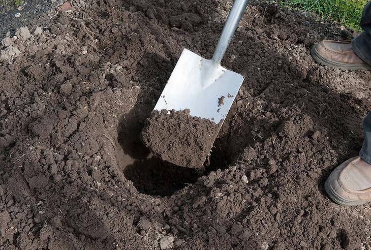 Подготовка посадочных ямок