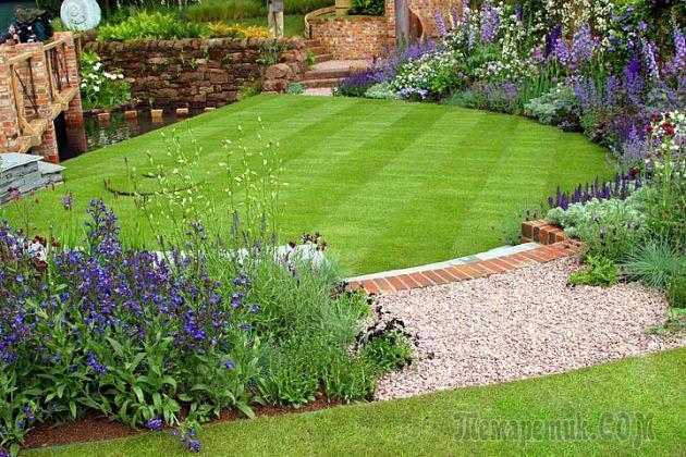 Самая низкая газонная трава