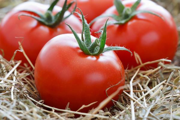 Как надолго сохранить свежие помидоры